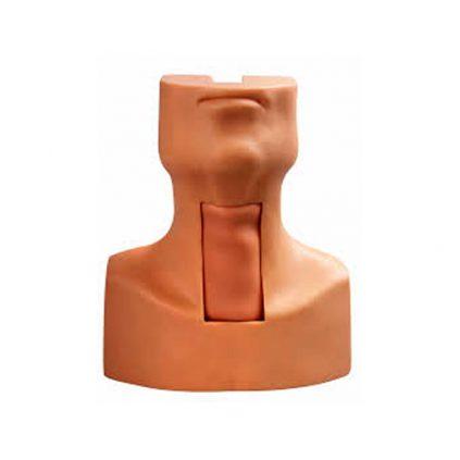 مانکن تراکئوستومی(مولاژ سر و گردن آموزش عمل و مراقبت تراکئوستومی)